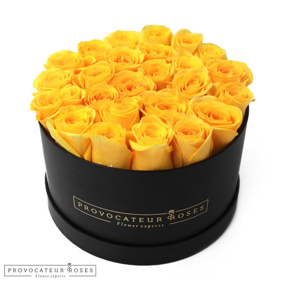rosas-preservadas