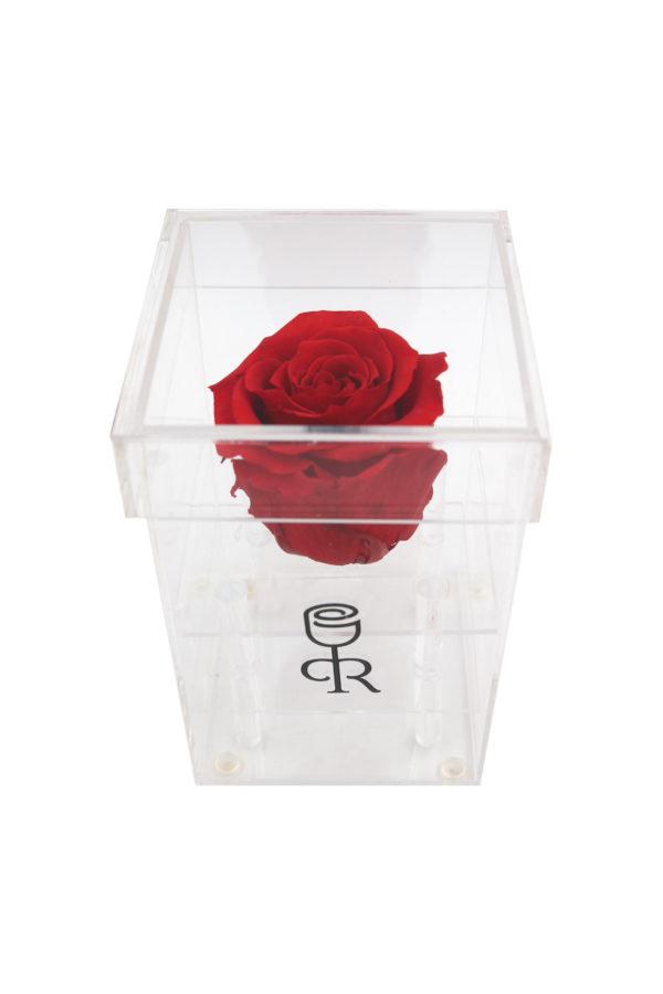 caja-rosas-acrilica