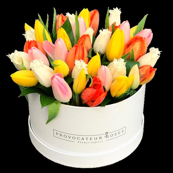 caja-tulipan